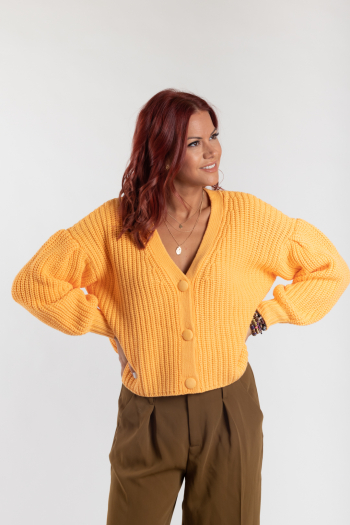 Ženski džemper Agila